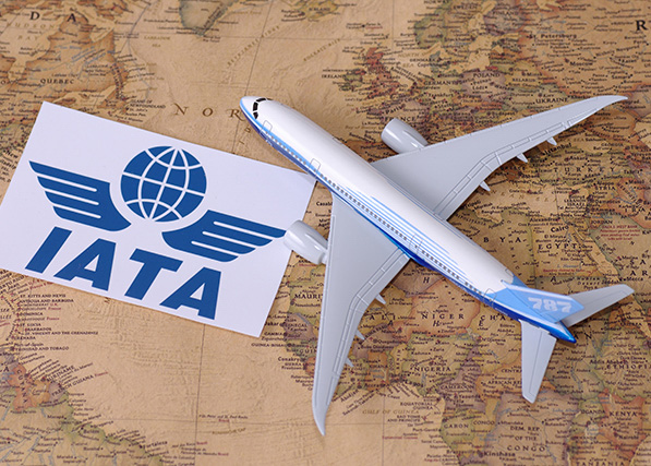 Airlines-feeling-the-squeeze-on-profit-margins-says-IATA-October-report_edited